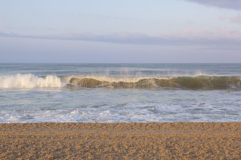 Une vague se courbe sur Santa Monica Shore image libre de droits