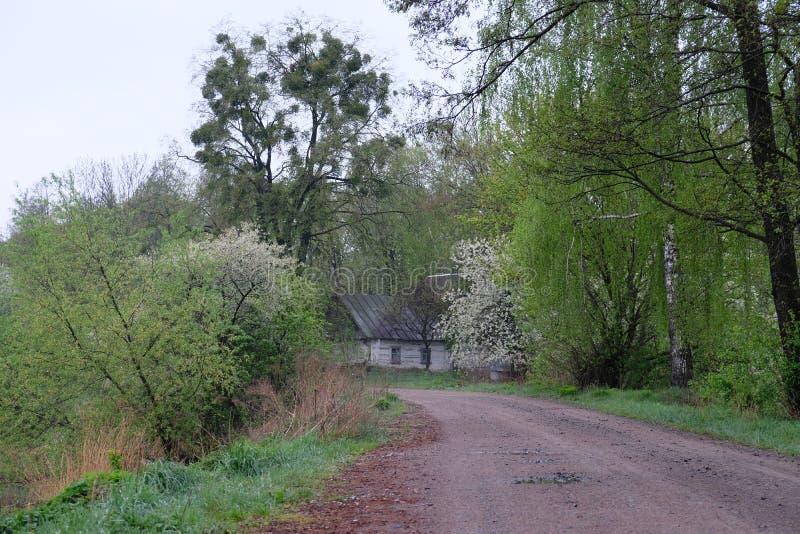Une vieille maison dans le village Paysage de ressort, avec des arbres de floraison photos stock