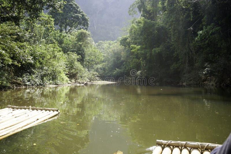 une visite transportante par radeau dans la jungle photo stock