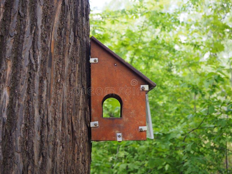 Une voli?re d?coup?e en bois sur un tron?on d'arbre, un conducteur pour des oiseaux en parc image libre de droits