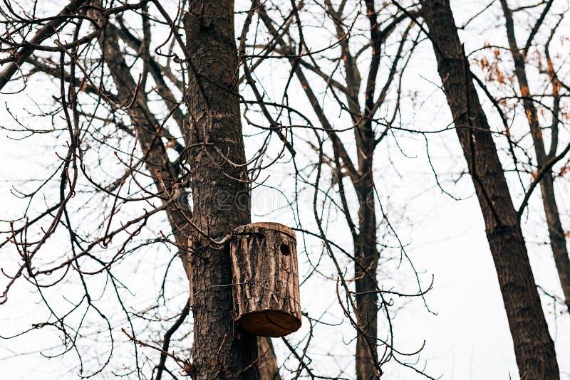 Une volière sur l'arbre Une volière faite maison faite par le schoolchil images libres de droits