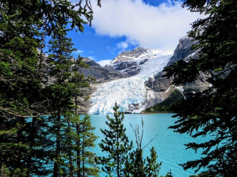 Une vue étroite de glacier de Robson de bâti directement à travers du lac berg, tout en augmentant la traînée de lac berg en Colo photos libres de droits