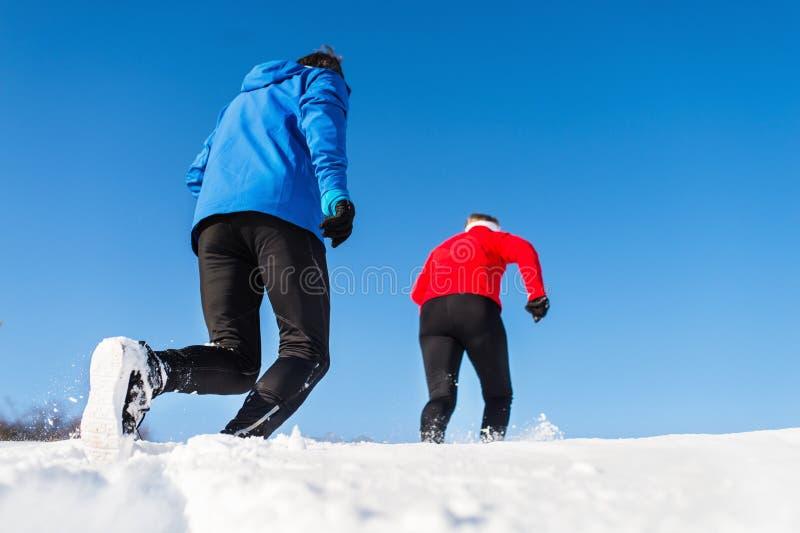 Une vue arrière des couples supérieurs pulsant en nature neigeuse d'hiver photo stock