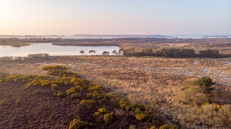 Une vue d'aerail de la réserve naturelle de Studland avec la dune de sable, le marais de tourbe et le lac sous un ciel bleu flou photographie stock libre de droits