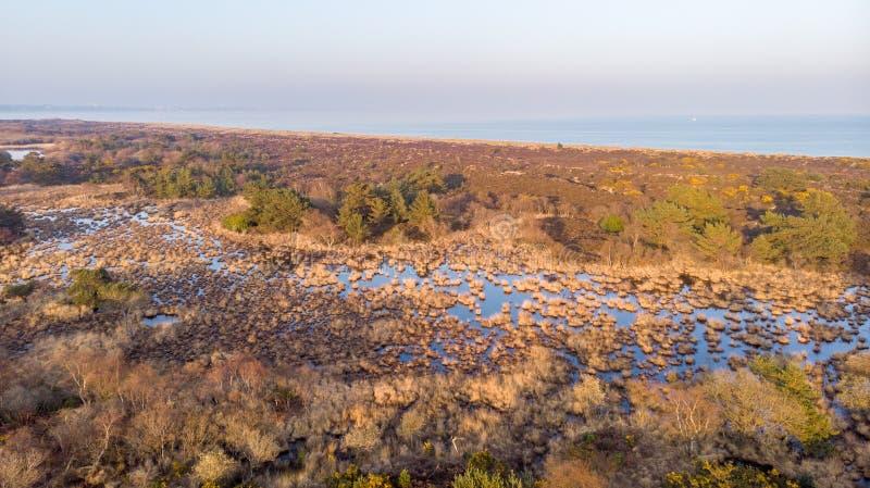 Une vue d'aerail de la réserve naturelle de Studland avec la dune de sable, le marais de tourbe et la mer sous un ciel bleu flou photos stock