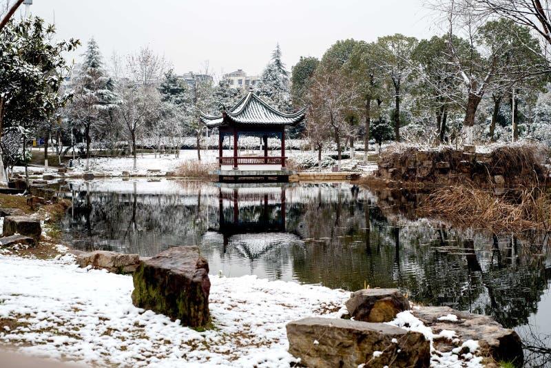 Une vue de beau jardin de sonw photos stock