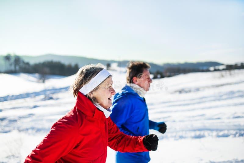 Une vue de côté des couples supérieurs pulsant en nature neigeuse d'hiver images libres de droits
