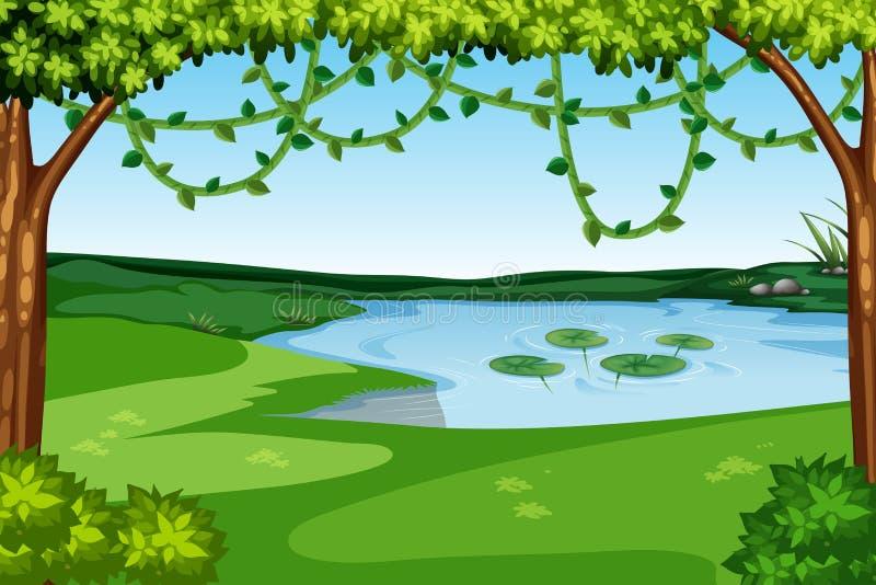 Une vue de lac de nature illustration stock