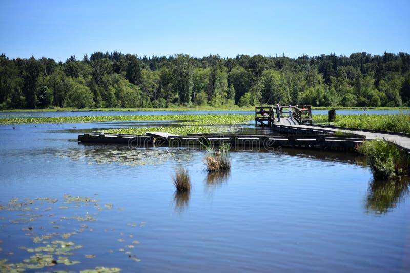Une vue du parc régional de lac Burnaby photos stock