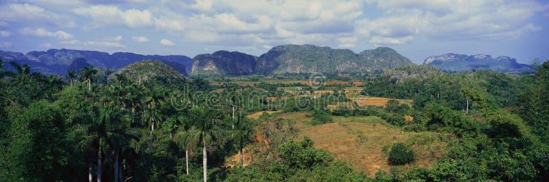 Une vue panoramique des bières anglaises de ½ de ¿ de Valle de Viï, au Cuba central images libres de droits