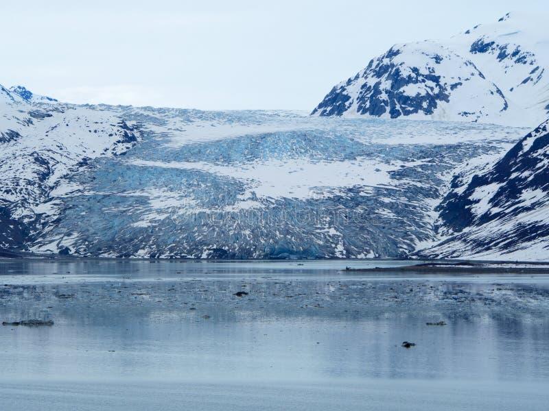 Une vue plus étroite de Reid Glacier, parc national de baie de glacier photographie stock libre de droits