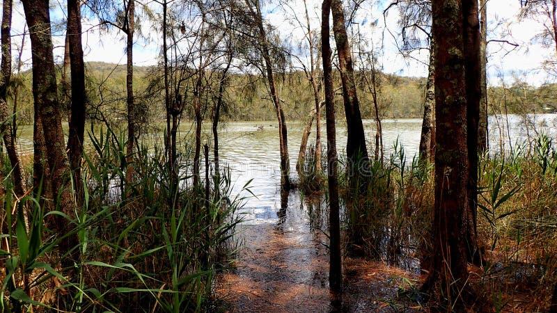Une vue sur la lagune photos stock