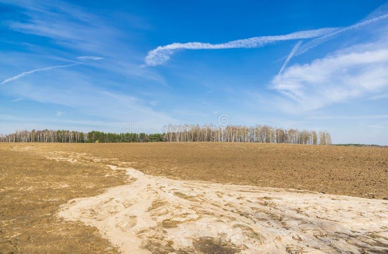 Une zone au printemps image stock