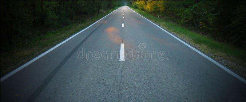 Unendlichkeitsstraße zum Holz lizenzfreies stockfoto
