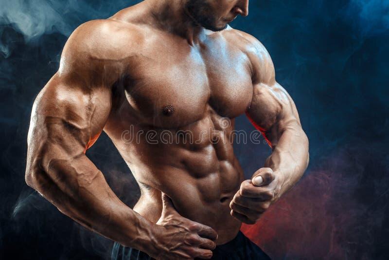 Unerkennbarer starker Bodybuildermann mit perfekter ABS, Schultern, Bizeps, Trizeps, Kasten lizenzfreie stockbilder