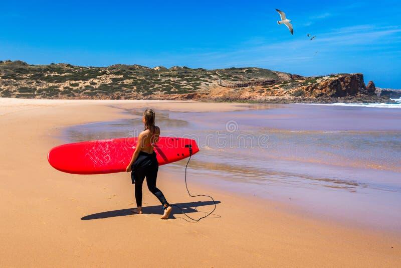 Unerkennbares tragendes Brandungsbrett der jungen Frau am Praia DA Bordeira, Portugal Junge Frau, die Brandungsbrett auf dem Seeu lizenzfreie stockbilder
