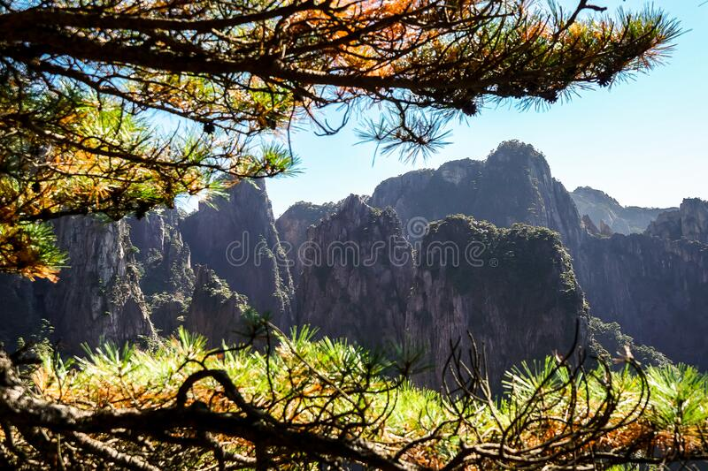 UNESCO World Heritage Site Natural beautiful landscape of Huangshan mountain scenery  Yellow mountain  in Anhui CHINA, It is a royalty free stock photography