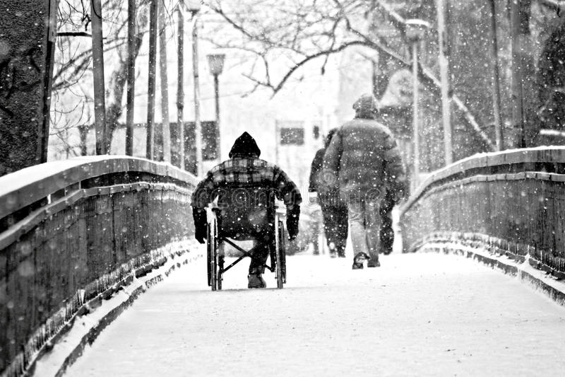 Unfähigkeit - Behindert-Rollstuhl-Wanderer lizenzfreie stockbilder