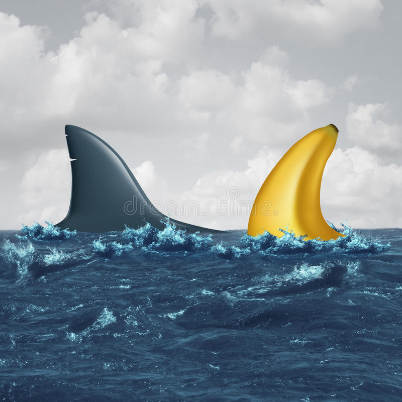 Unfair Negotiation. Business concept and out of your league symbol as a shark fin facing off with a similar shaped banana as a metaphor for lack of skills and royalty free illustration