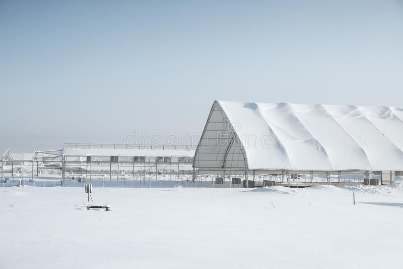 Download Unfinished Structure With A Shed In Winter Stock Photo - Image: 23967476