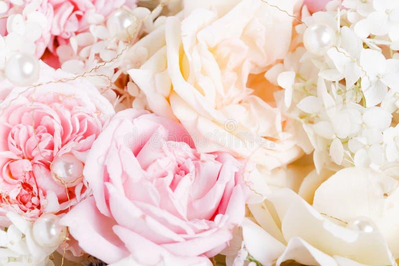 Unfocused plamy r??ani p?atki, abstrakcjonistyczny romansowy t?o, pastel i mi?kka kwiat karta, zdjęcia royalty free