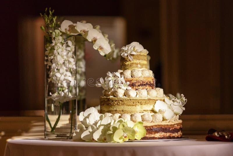 Unfrosted naken bröllopstårta royaltyfria bilder