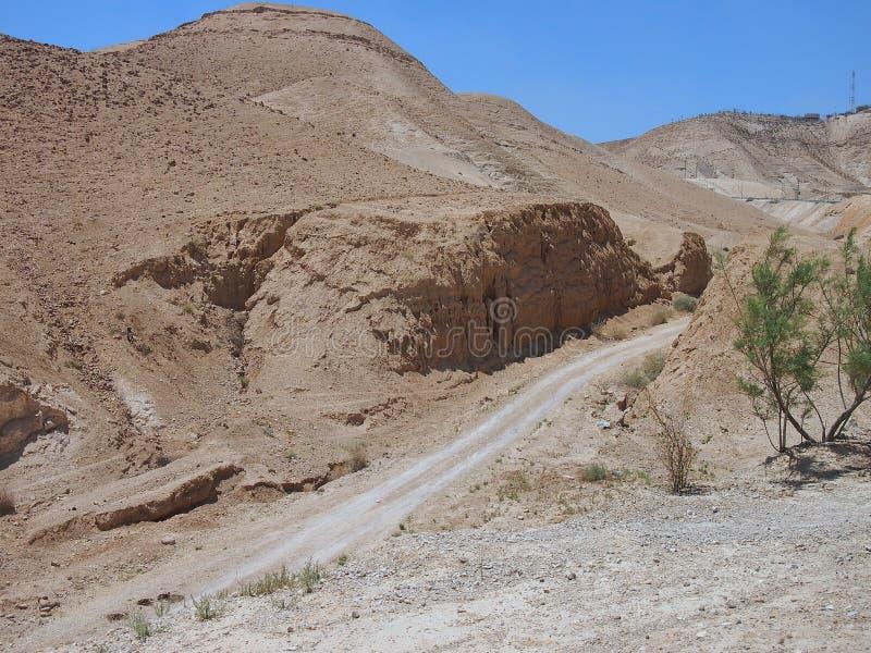 Unfruchtbare Judaean-Wüste, Israel, Heilige Länder stockfotografie