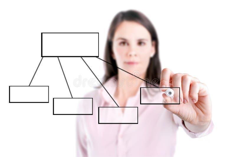 Ung affärskvinna som drar ett flödesdiagram 1, vit bakgrund. arkivfoton