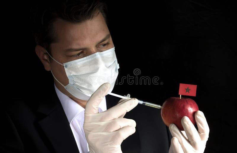 Ung affärsman som injicerar kemikalieer in i ett äpple med den marockanska flaggan på svart bakgrund arkivfoto