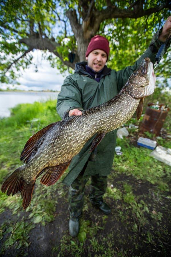 Ung amatörmässig sportfiskare royaltyfria foton