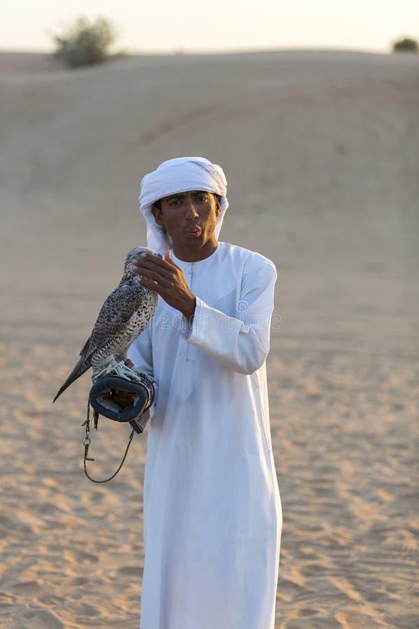 Ung arabisk man som rymmer en hök i öknen nära Dubai, UAE arkivbild