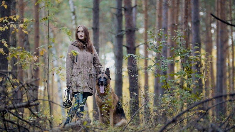 Ung attraktiv flicka och hennes husdjur - tysk herde - som går på en höstskog fotografering för bildbyråer