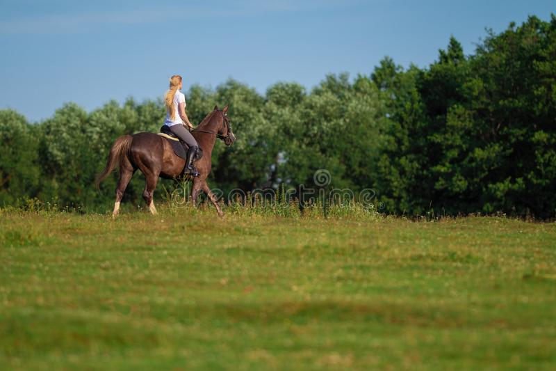 Ung blond kvinna med den långa hårjockeyryttaren som hoppar på en fjärdhäst royaltyfri bild