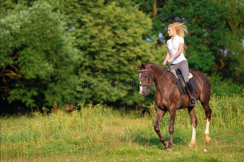 Ung blond kvinna med den långa hårjockeyryttaren som hoppar på en fjärdhäst royaltyfri foto