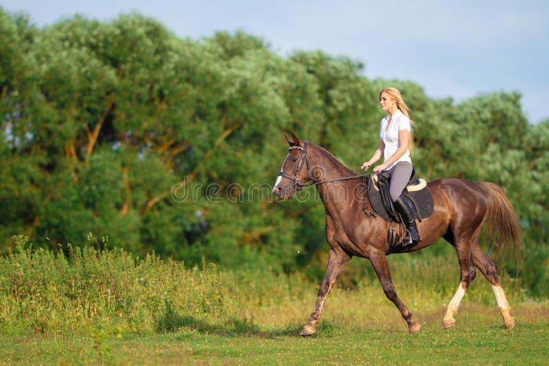 Ung blond kvinna med den långa hårjockeyryttaren som hoppar på en fjärdhäst arkivfoto