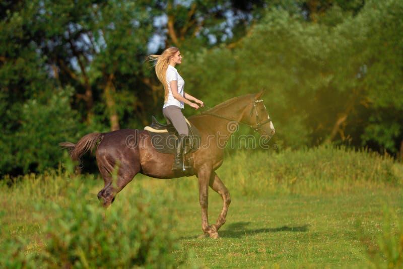 Ung blond kvinna med den långa hårjockeyryttaren som hoppar på en fjärdhäst royaltyfri fotografi