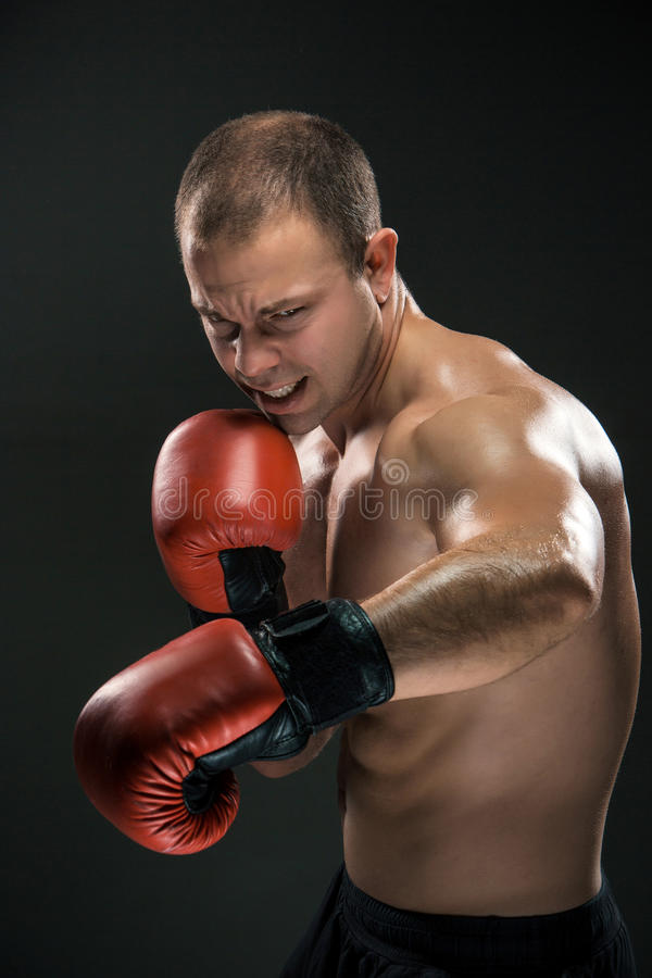 Ung boxareboxning royaltyfri foto