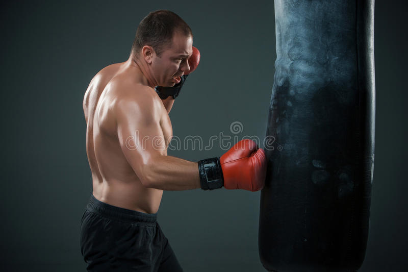 Ung boxareboxning royaltyfria foton