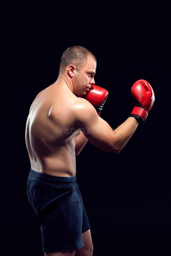 Ung boxareboxning royaltyfri fotografi