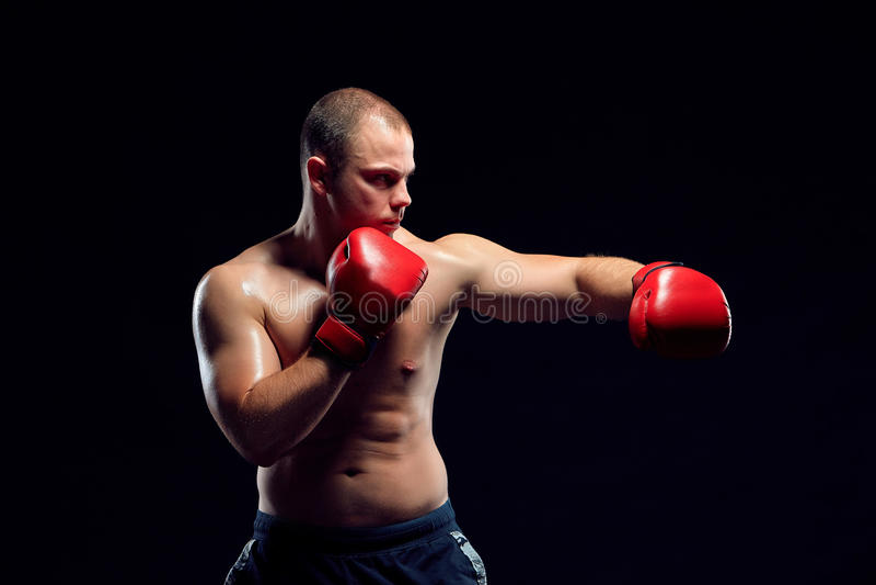 Ung boxareboxning royaltyfria bilder