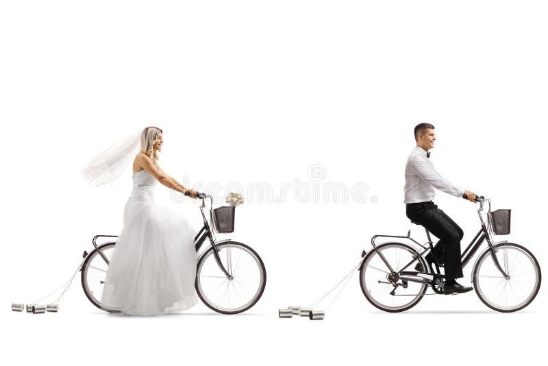 Ung brud som rider en cykel royaltyfri bild
