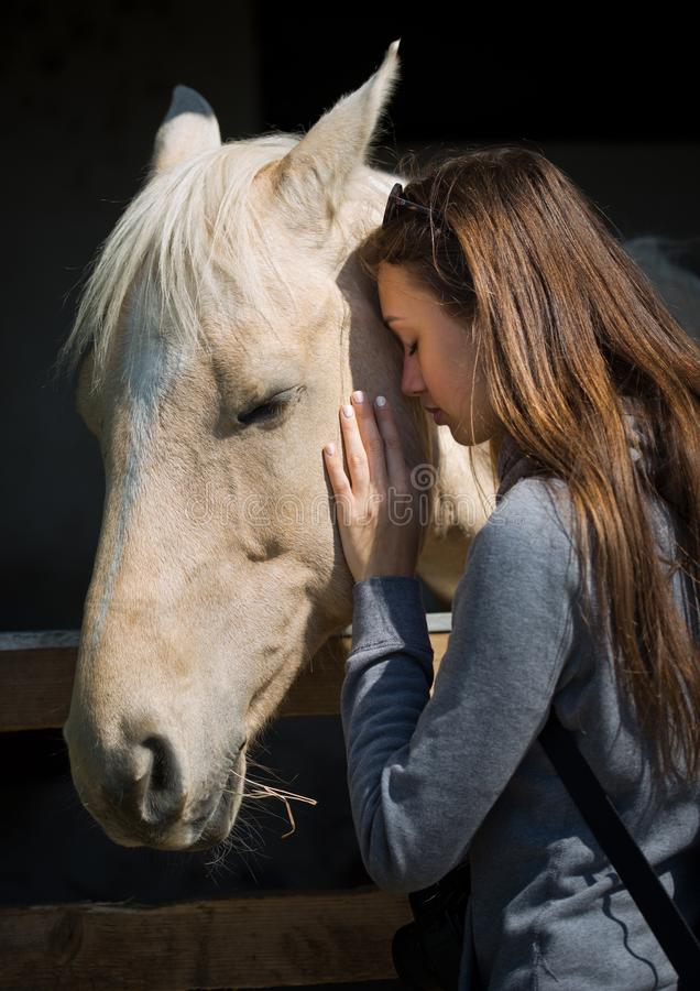 Ung brunett som hjälper hästen royaltyfri bild