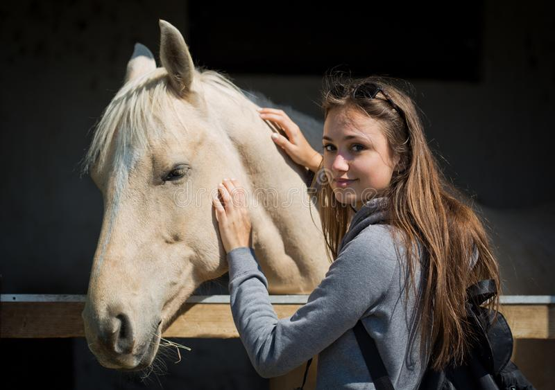 Ung brunett som hjälper hästen royaltyfria foton