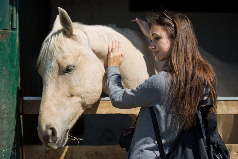 Ung brunett som hjälper hästen arkivbild