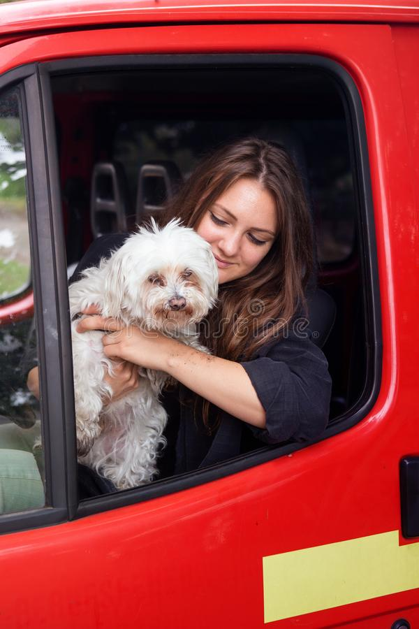 Ung brunettkvinna som sitter i bil med hennes lilla vita hund arkivbilder