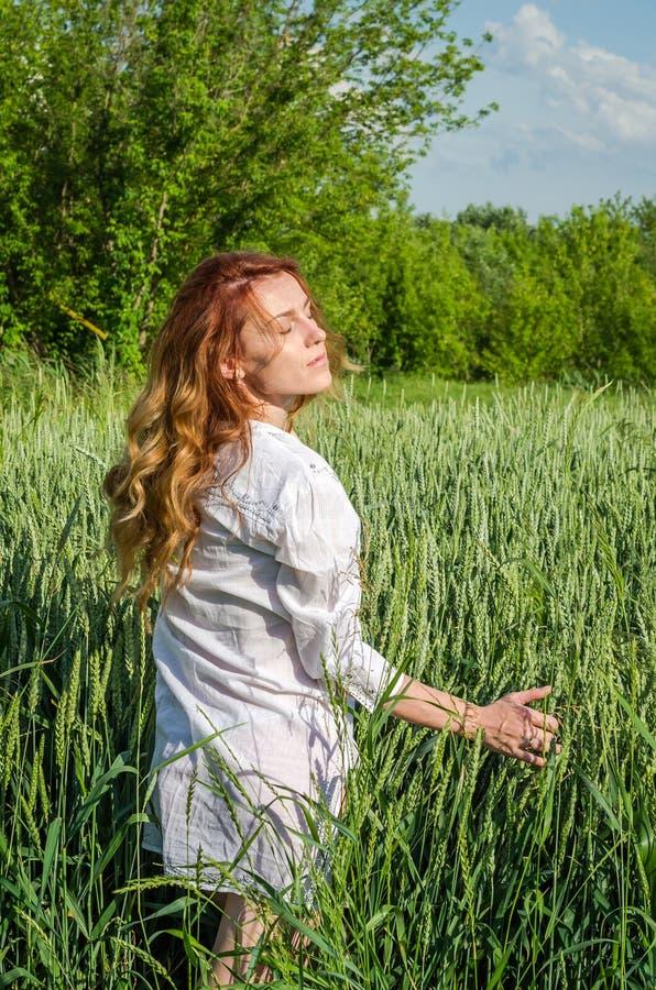 Ung charmig kvinna som utomhus går i ett fält nära de gröna buskarna och träden, hand som klappar veteöron som är iklädda ett här arkivfoto