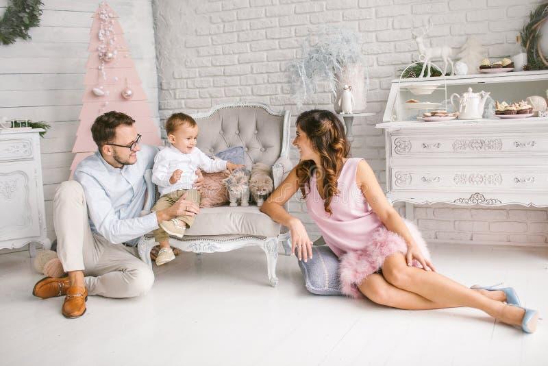 Ung fader och moder som spelar med sonen och katter royaltyfri foto