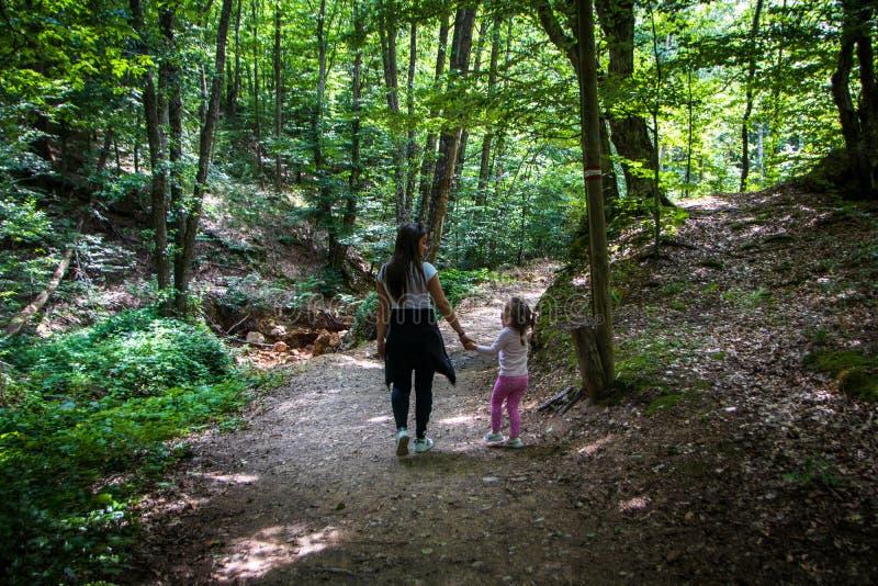 Ung familj som går i en skog i sommar royaltyfri bild