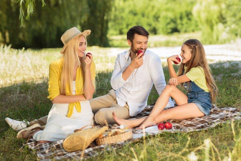Ung familj som tycker om sommarpicknicken i bygd fotografering för bildbyråer