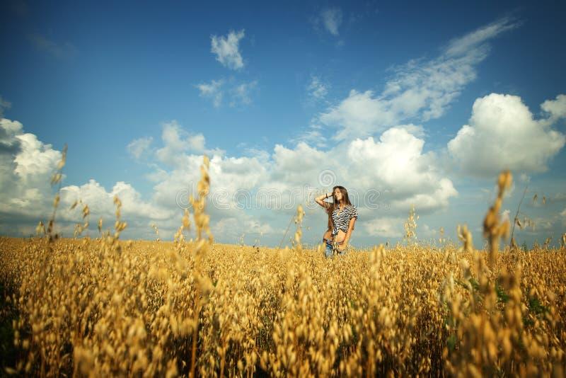 Ung flicka i fältet royaltyfri bild